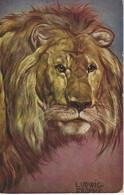 CPA Illustrauteur Signé LUDWIG BONNE - PORTRAIT TETE DE LION - Lions