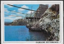 PUGLIA - GARGANO PITTORESCO - IL TRABUCCO - ANNULLO ROSSO DI FOGGIA 2004 - Italia