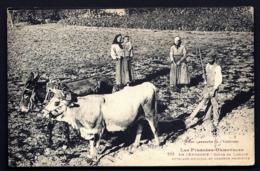 CPA ANCIENNE FRANCE-EN CERDAGNE- RARE ATTELAGE MIXTE- MULE ET BOEUF- LABOUREUR TRES GROS PLAN AVEC ANIMATION - Attelages