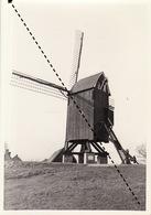 Photo Originale Moulin Molen à Oostvleteren - Orte