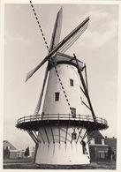 Photo Originale Moulin Molen à Wevelgem - Orte