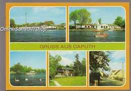 BRD - AK - Caputh / Dampfer, Einsteinhaus, Motorjacht - Caputh