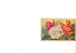 Fleur,plante - Plantes Médicinales
