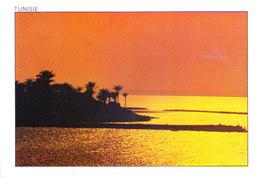 TUNISIA : 1989 PICUTURE POST CARD COMMERCIALLY SENT TO GERMANY : SEA VIEW - COUCHER DE SOLEIL - Tunisia