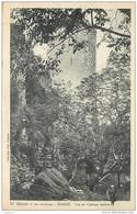 79 ECHIRE Vue Du Château Salbart CPA Coll. Max Ménard N°93 Niort Et Ses Environs - Sonstige Gemeinden