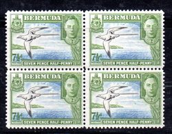 W1195 - BERMUDA 1934 , Yvert N. 112 In Splendida Quartina  ***  MNH - Bermuda