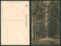 OF [17550] - BELGIUM - MARIEMONT - LA DREVE - Morlanwelz