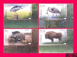 MOLDOVA 2018 Nature Reserve Fauna Birds Herons Animals Cattle Wild Boar & European Bison 4v Mi1037-1040 Sc975-978 MNH - Moldova