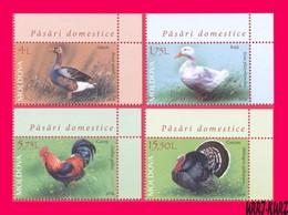 MOLDOVA 2018 Nature Fauna Birds Farm Domestic Poultry Goose Duck Rooster Turkey Gobbler 4v Mi1057-1060 Sc993-996 MNH - Moldova