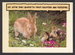 90013/ ANIMAUX HUMORISTIQUES, Lapin Et Canetons - Animali