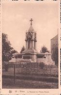 Virton Le Monument De L'Avenue Bouvier - Virton