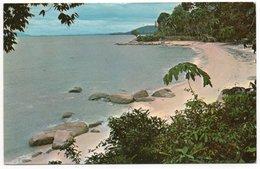 MALAYSIA - TANJONG BUNGAH BEACH PENANG - Malesia