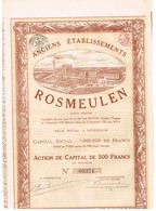 Action Ancienne - Anciens Etablissements Rosmeulen - Titre De 1920 - N°05271 -  F+ - Industrie