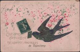 CPA CP Elles Vous Apportent Mes Bonnes Nouvelles De Capestang 34 Hérault Hirondelle CAD 1910 YT 137 Semeuse - Capestang