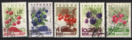 URSS - 1964 - FRUTTI SELVATICI - USATI - Oblitérés