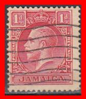 JAMAICA SELLO AÑO 1929.32 1D RED, TYPE II — CROSS SHADING BENEATH JAMAICA - Jamaica (1962-...)