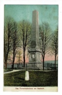 Das Turrennedenkmal Bei Sasbach - Monument De Turrenne - Circulé 1909, Colorisée - Sasbach