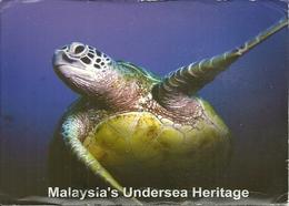 "Sipadan Island (Malaysia) ""Hawksbill Turtle"" ""Eretmochelys Imbricata"" Thematic Stamp ""Piala Majlis Kriket 97 ICC Trophy"" - Malesia"