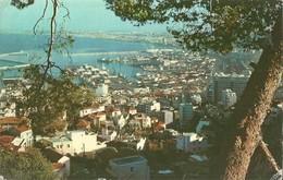 Alger (Algeria) Vue Panoramique, General View, Panorama, Gesamtansicht - Algeri