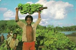 Madagascar, Cote-Est, Redolte Des Bananes - Madagascar