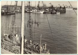 Poland. Gdynia. The Harbour 2. - Barcos