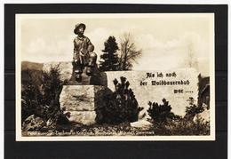 STM1040 POSTKARTE 1951 PETER ROSEGGER DENKMAL UNGEBRAUCHT SIEHE ABBILDUNG - Österreich