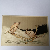 Bonne Annee - New Year / Happy Pigs / Ski 19?? - Nieuwjaar