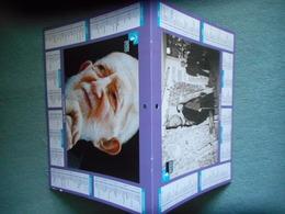 "CALENDRIER 2013 ""FONDATION ABBE PIERRE"" - Autres Collections"
