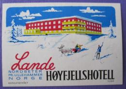 HOTEL HOTELLI HOTELL MOTEL MINI LANDE HOYFJELLS LILLE OSLO NORWAY NORGE DECAL STICKER LUGGAGE LABEL ETIQUETTE AUFKLEBER - Hotel Labels