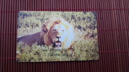 Nice Chip Phonecard Lion Zimbabwe Used 2 Scans Rare - Zimbabwe