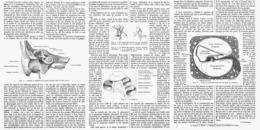 L'AUDITION Et La MUSIQUE   1914 - Music & Instruments
