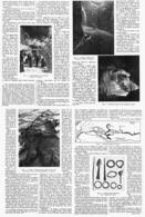 COMMENT ON DEVIENT SOURCIER    1914 - Technical