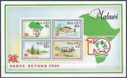 Malawi 1990 Tiere Fauna Animals Fische Fish Antilopen Antelopes Bäume Trees Entwicklung Developement SADCC, Bl. 71 ** - Malawi (1964-...)