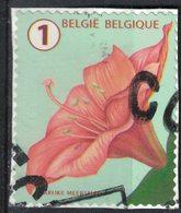 Belgique 2016 Oblitéré Used Flower Fleur Amaryllis SU - Belgique