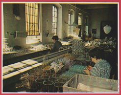 Verrerie à Karlovy Vary. Les Cristaux De Bohême. Tchécoslovaquie. Encyclopédie De 1970. - Old Paper