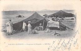 Algérie SAHARA ALGERIEN Campement De Nomades ( Cpa DOS SIMPLE  Année 1902 Editions : ND Phot 39 ) *PRIX FIXE - Scènes & Types