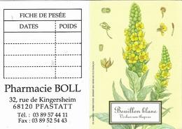 Calendriers De Poche 2011 - Plante ( Bouillon Blanc ) ( Verbascum Thapsus ) Pharmacie BOLL 68120 PFASTATT - - Calendriers
