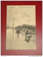 LINKEBEEK  -   Chemin Des Hospices - Les Sapinières  -   1905  - - Linkebeek