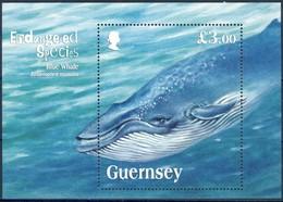 +H755. Guernsey 2011. Blue Whale. Bloc. Michel 52. MNH(**) - Guernesey