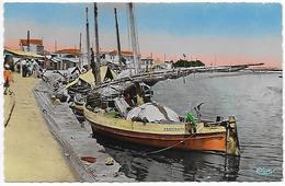 11)   LA  NOUVELLE  - Le Port - Port La Nouvelle