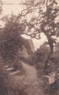 CLOVELLY - CLIFF WALK . LL 18 - Clovelly