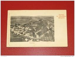 SALMCHÂTEAU - SALM-CHÂTEAU   -  Panorama    -  1900  - - Vielsalm