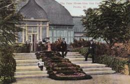 Illinois Peoria The Palm House In Glen Oak Park 1909 - Peoria