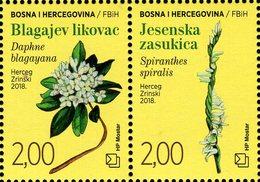 Bosnia & Herzegovina - Mostar - 2018 - Flora - Flowers - Mint Stamp Set - Bosnia Erzegovina