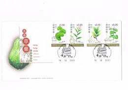 Hong Kong - Herbs - Official Souvenir Cover - 2001 - 1997-... Région Administrative Chinoise