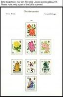 SAMMLUNGEN, LOTS **, Komplette Postfrische Sammlung Grossbritannien Von 1963-88 In 2 KA-BE Falzlosalben (Text Ab 1946),  - Grande-Bretagne