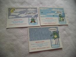 LOT DE 3 CARTES ILLUSTRATIONS HUMORISTIQUES ..METEO-CARTE - Humor