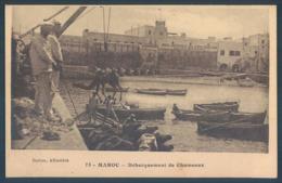 Maroc Débarquement De Chameaux - Maroc