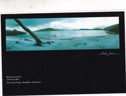 LAPATAIA BAY, TIERRA DEL FUEGO. AÑO 2002. ENTIER ENTERO POSTAL. L'ARGENTINE - BLEUP - Postal Stationery