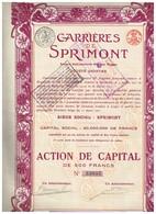 Action Ancienne - Société Anonyme Carrières De Sprimont - Anciens Ets Mth. Van Roggen - Titre De 1921 - Rare - VF - Mines
